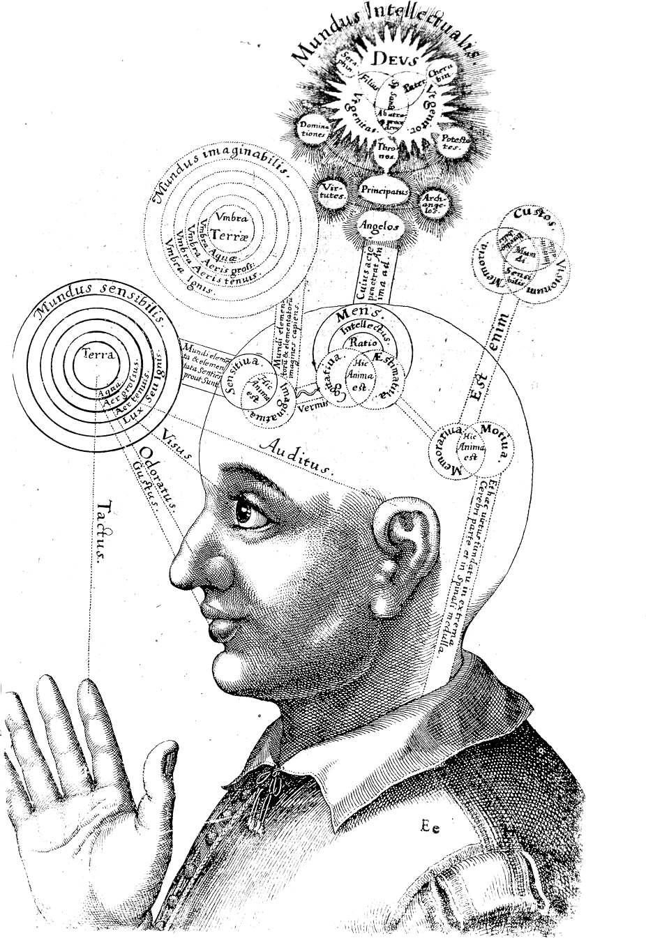 Illustration of man with many ideas floating over his head